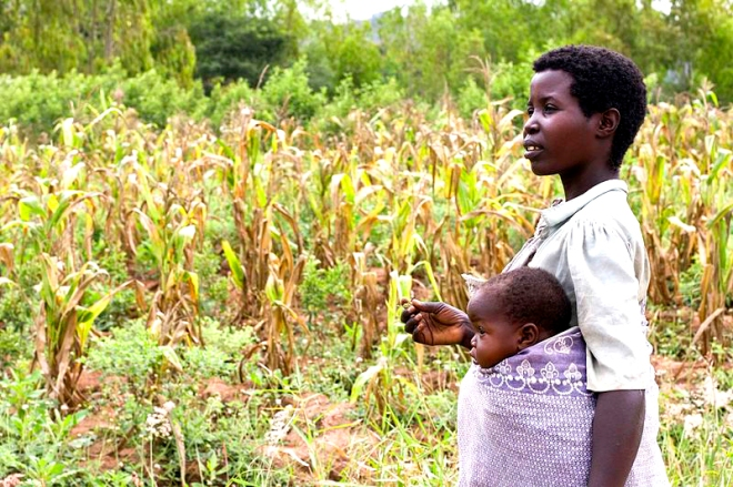 800px-Woman_farmer_and_baby,_Malawi