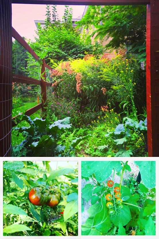Garden Collage copy.jpg
